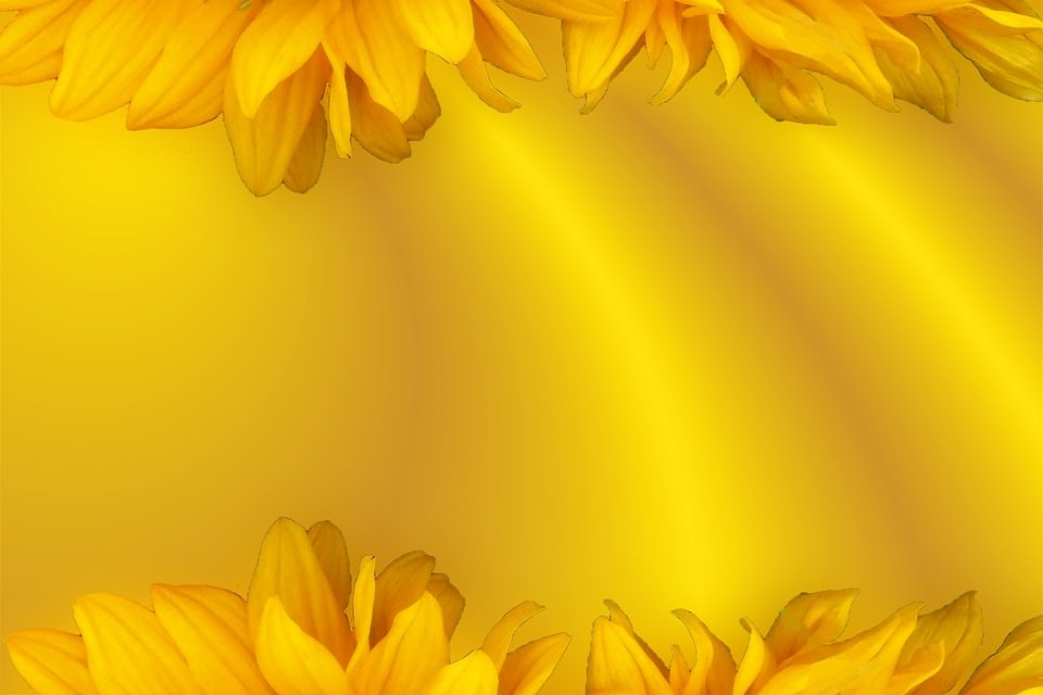 Floral Yellow Background For Free