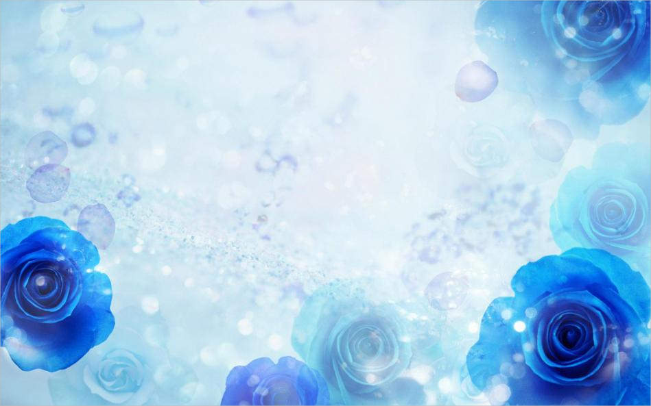 Free Cool Blue Rose Background For You