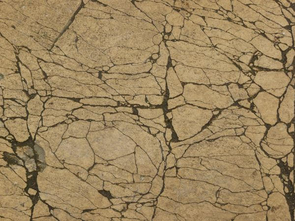 Free Cracked Beige Concrete Texture