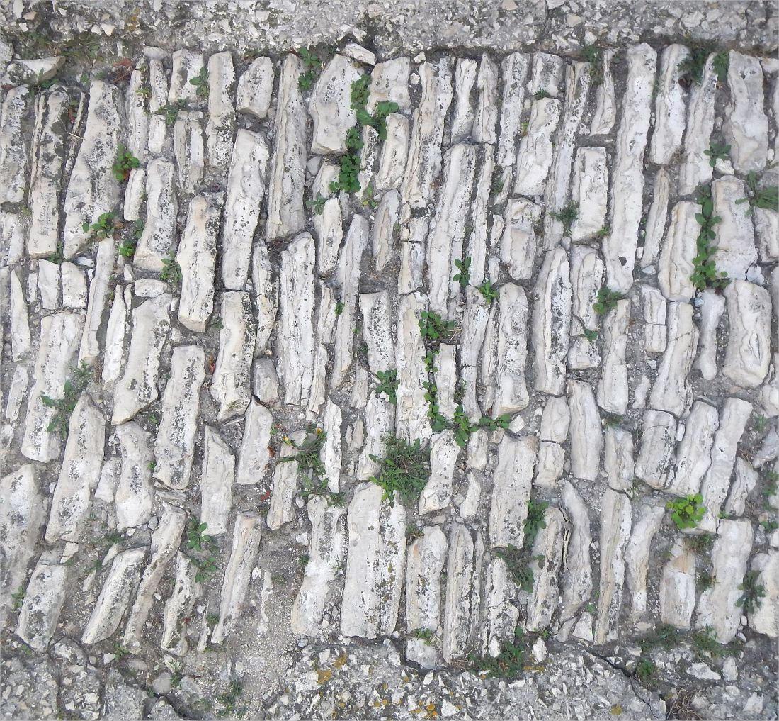 Free Messy Stone Bricks Floor Texture