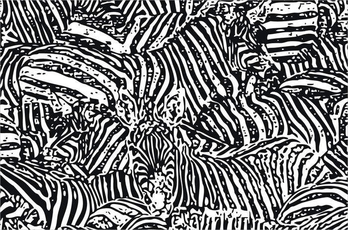 Free Vector Zebra Pattern For You