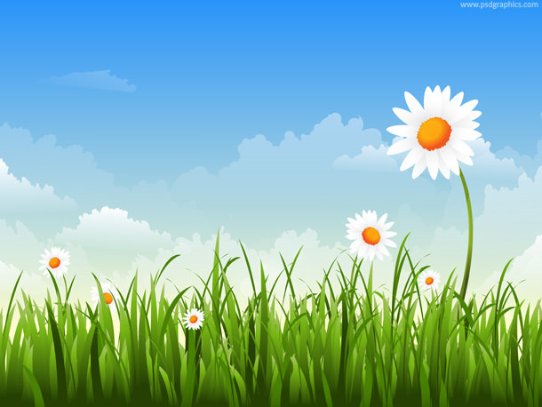 Grass with Flowers & Blue Sky Background