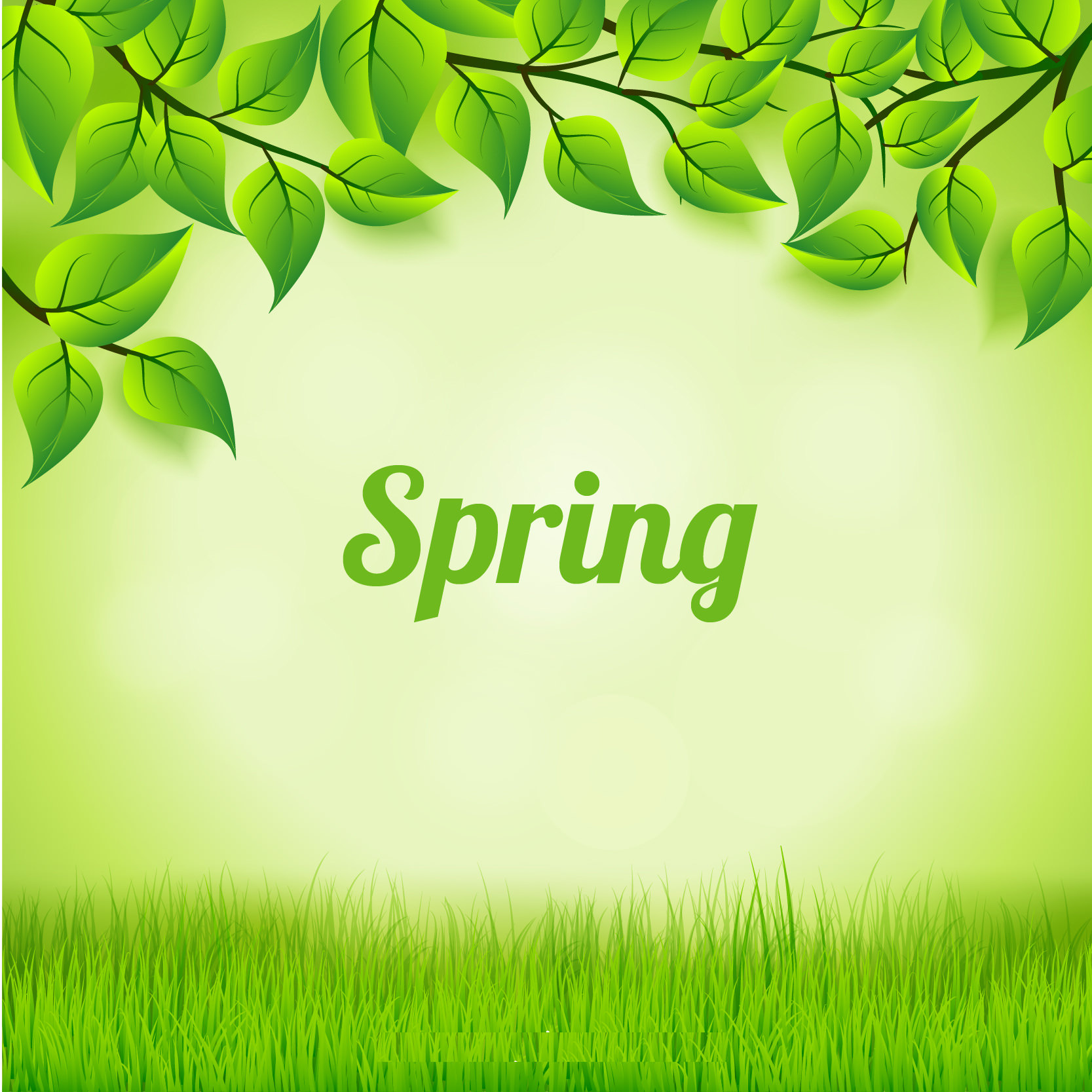 Green Leaves and Grass Background