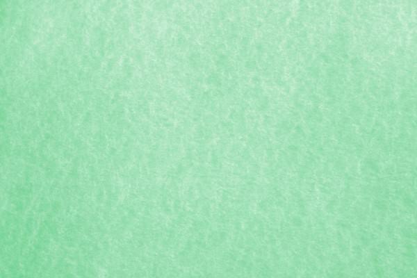 Green Parchment Paper Texture