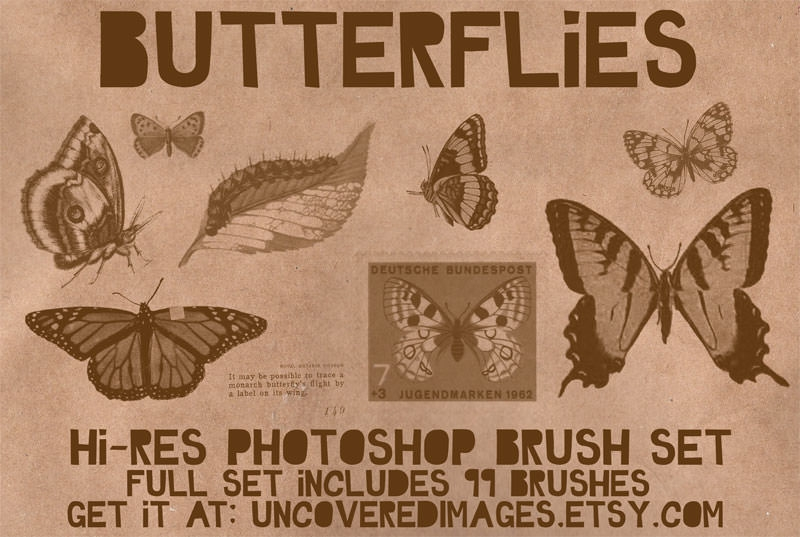 High Quality Butterflies photoshop Brushes