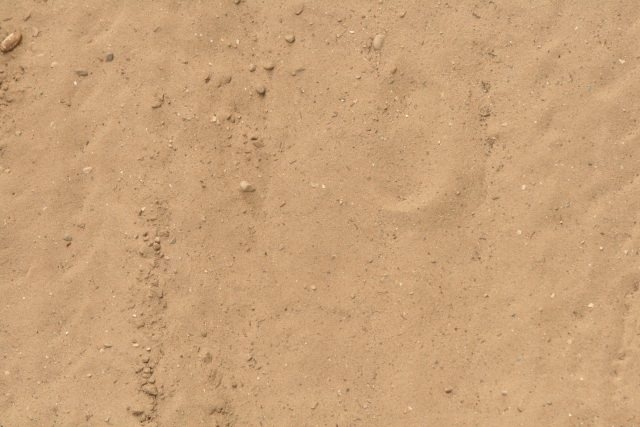 High Resolution Free Sand Texture
