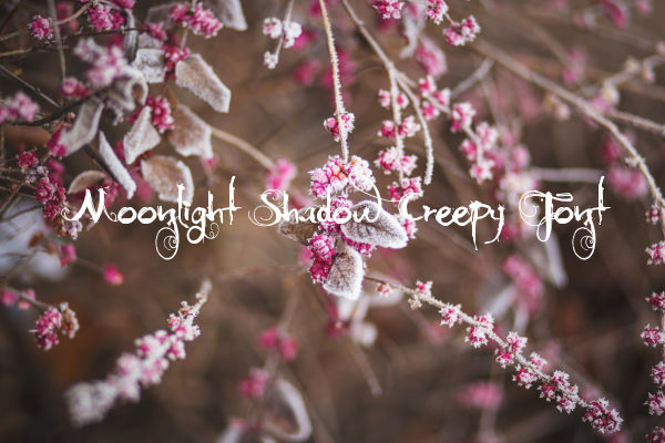 Moonlight Shadow Creepy Font