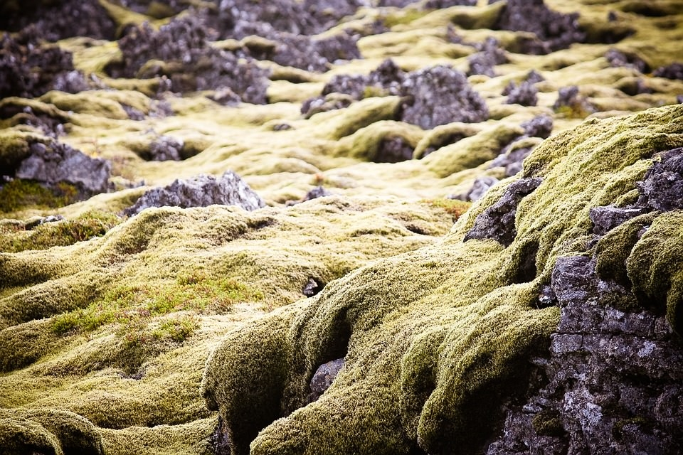 Nature Lava Rock Texture