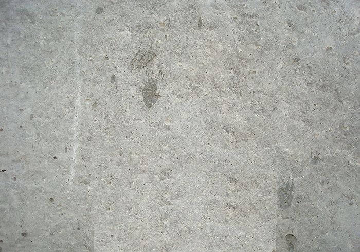 Old Concrete Texture For Free Download