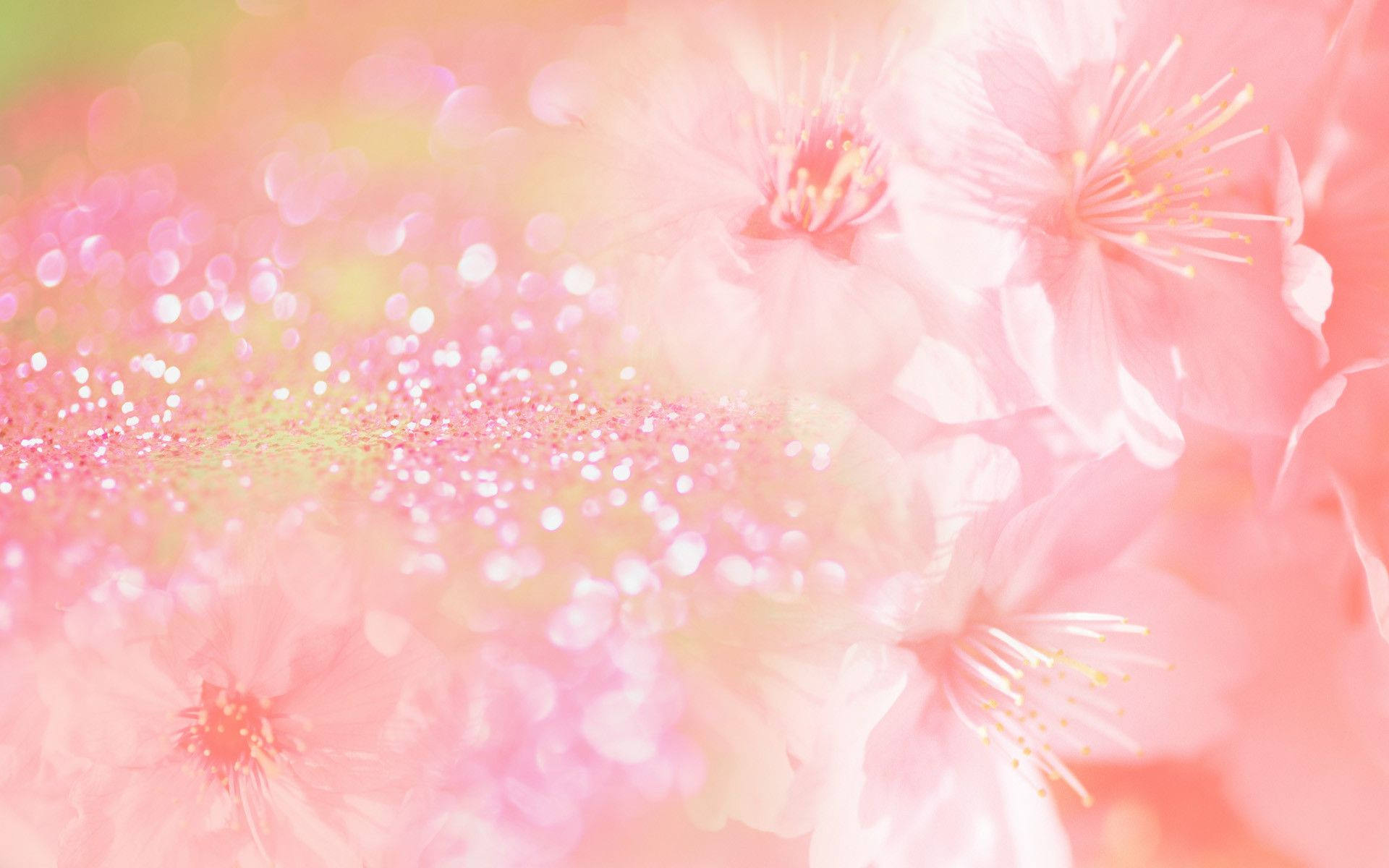 20+ Fabulous Pink Flower Backgrounds
