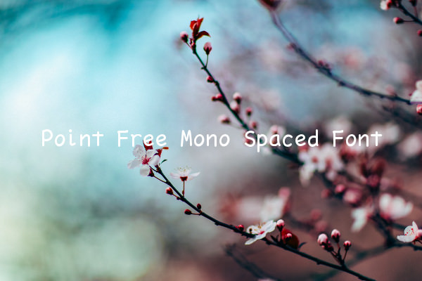 Point Free Mono Spaced Font