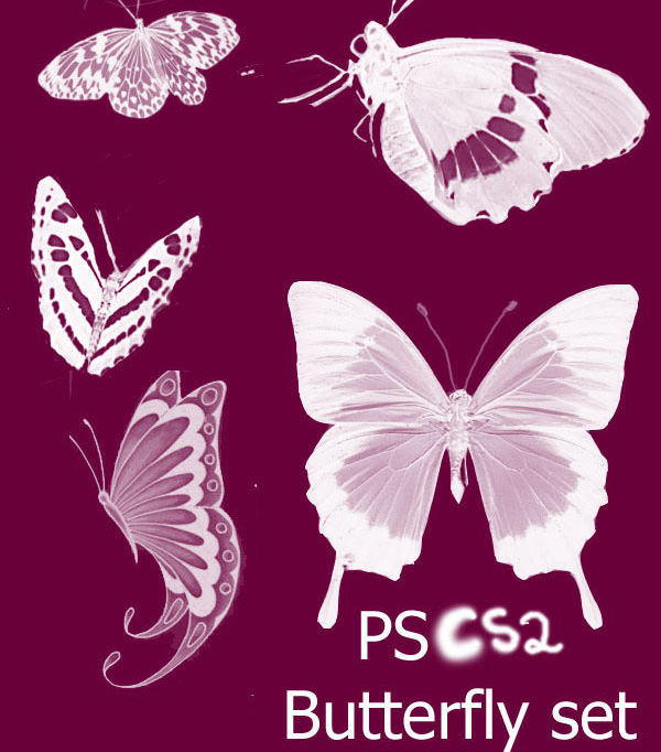 Pretty Butterfly Photoshop Brushes Set