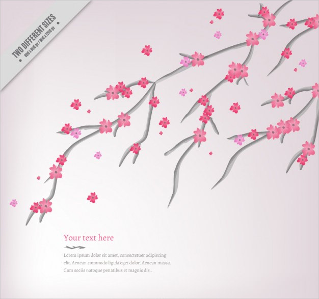 Pretty Cherry Cute Flowers Background