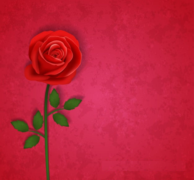 Red Rose Flower Background Free Vector