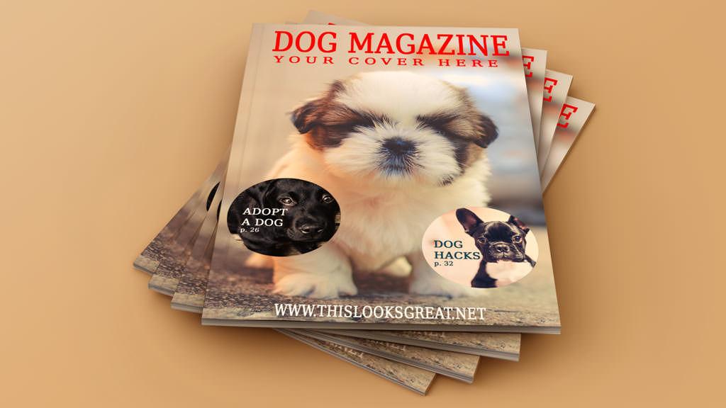 Set of Magazine Cover Mockup