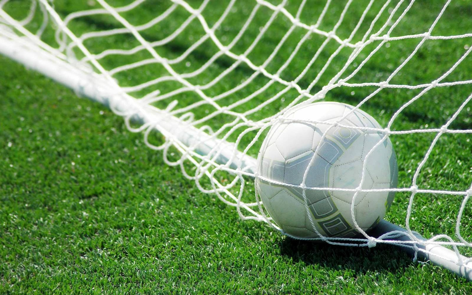Soccer Goal Net Background For Free