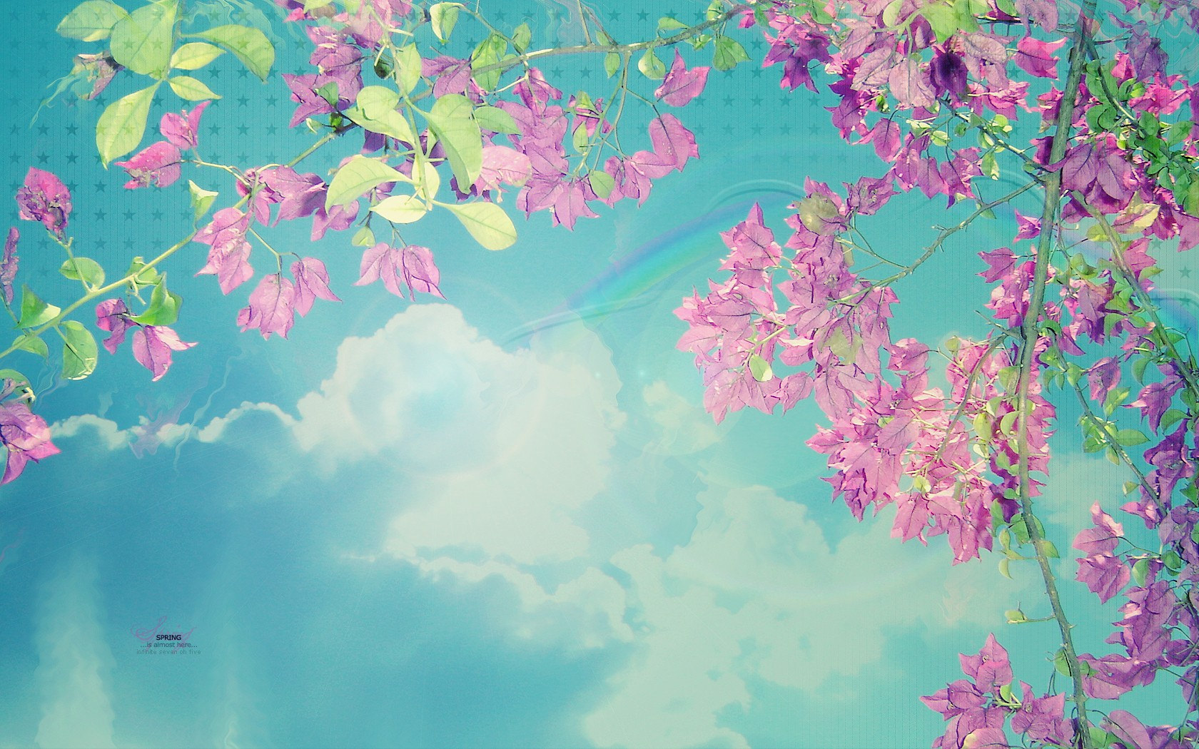 spring pink blue skies background