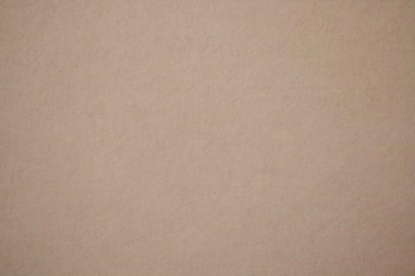 Tan Paper Texture