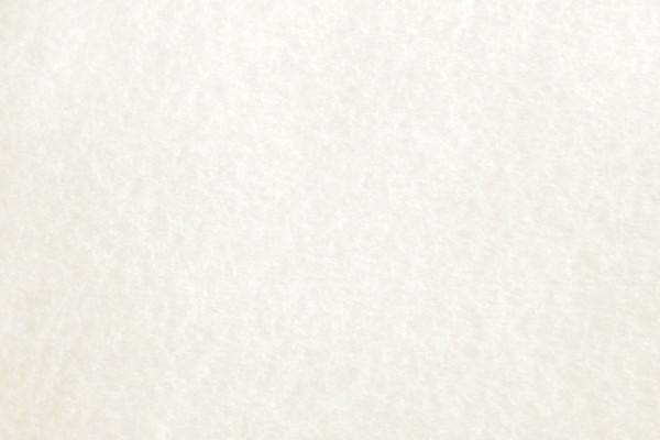 White Parchment Paper Texture.jpg