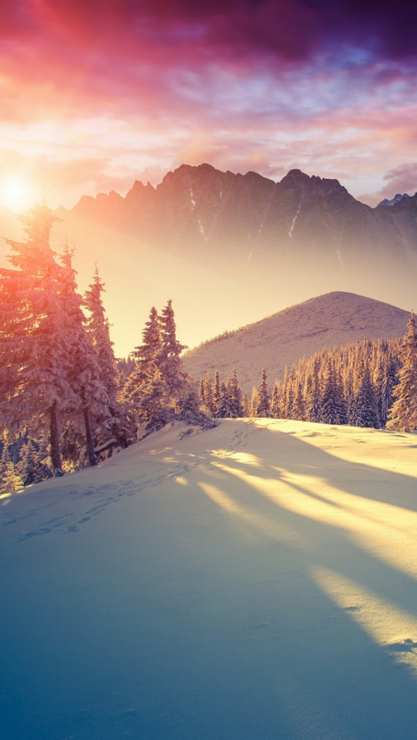 Winter Beams iPhone 5c background For Free