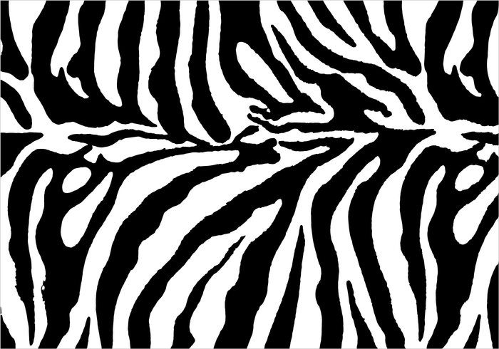 Zebra Black & White Pattern