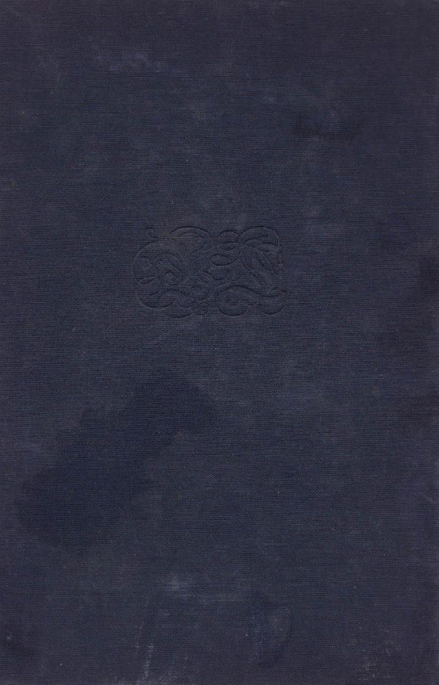 19 Vintage Book Texture Elements