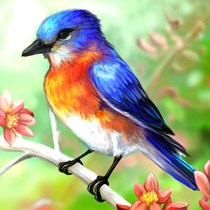 Free 15 Bird Drawings In Ai And Artworks For Your Inspiration
