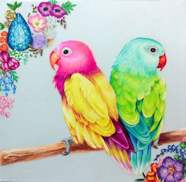 Parrot Bird Drawing