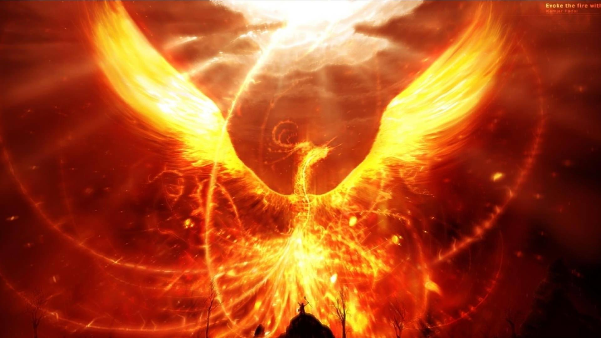 Fantasy Phoenix Fire Wallpaper