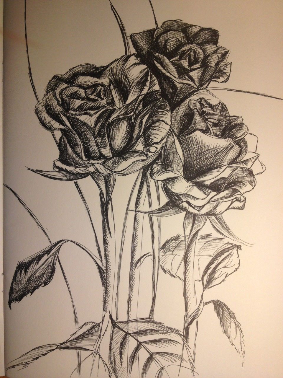 RoseFlower Drawing Art for Inspiration