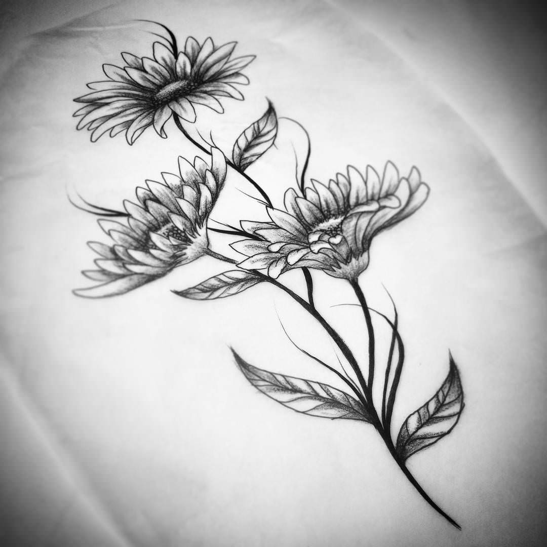 Daisies-Flower-Drawing