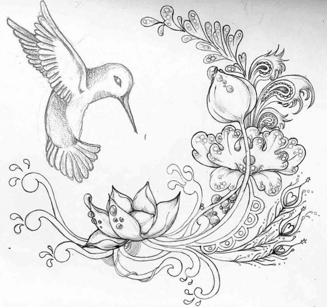 Bird Flower Drawing