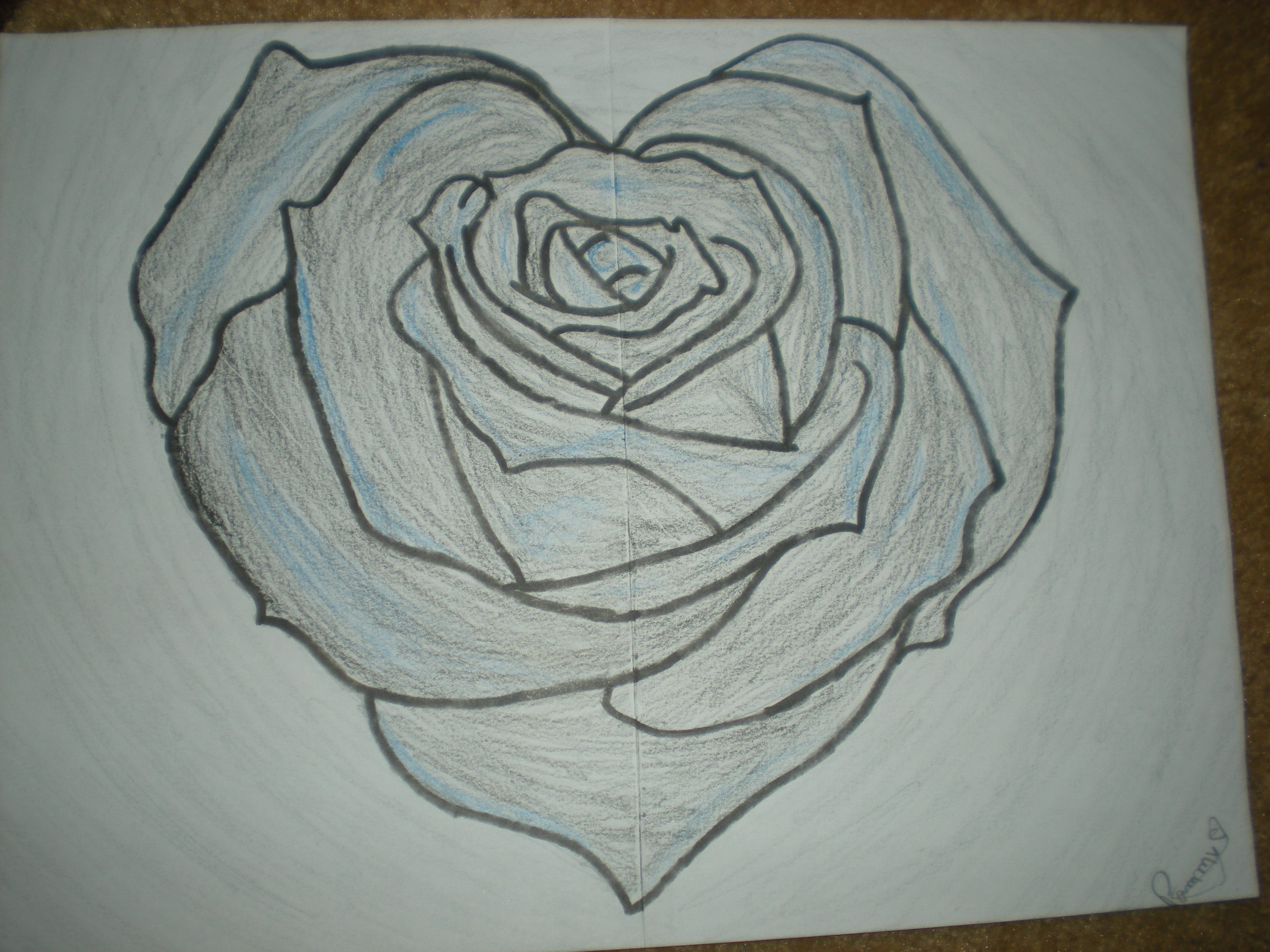 Astonishing Rose Drawing