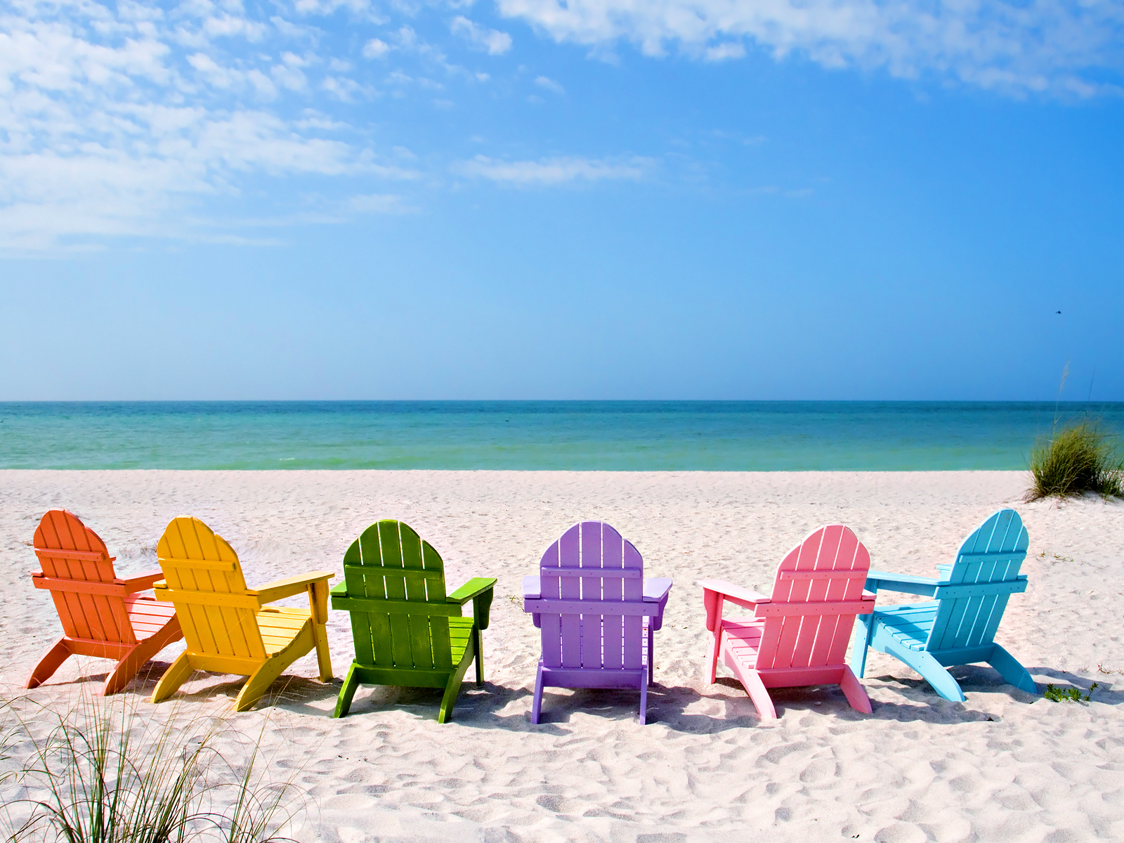 Summer Beach Color Wallpaper
