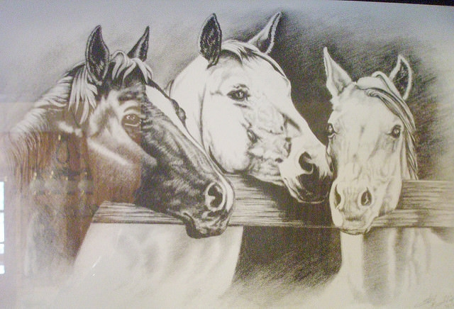 Fantastic Horses Drawing