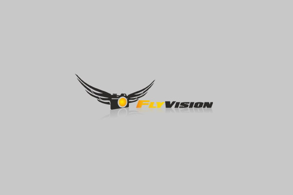 Fly Vision Logo Design