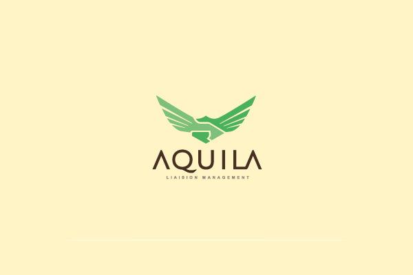 Aquila Logo Design