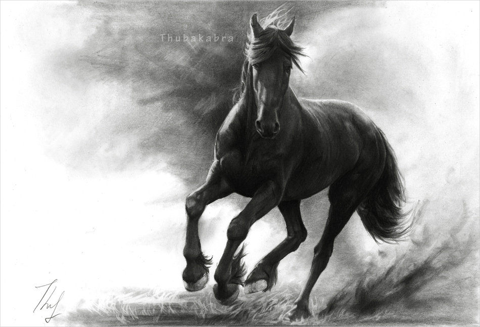 Horse in Storm Drawing