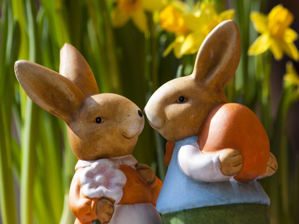 Stunning Easter Bunny Wallpaper