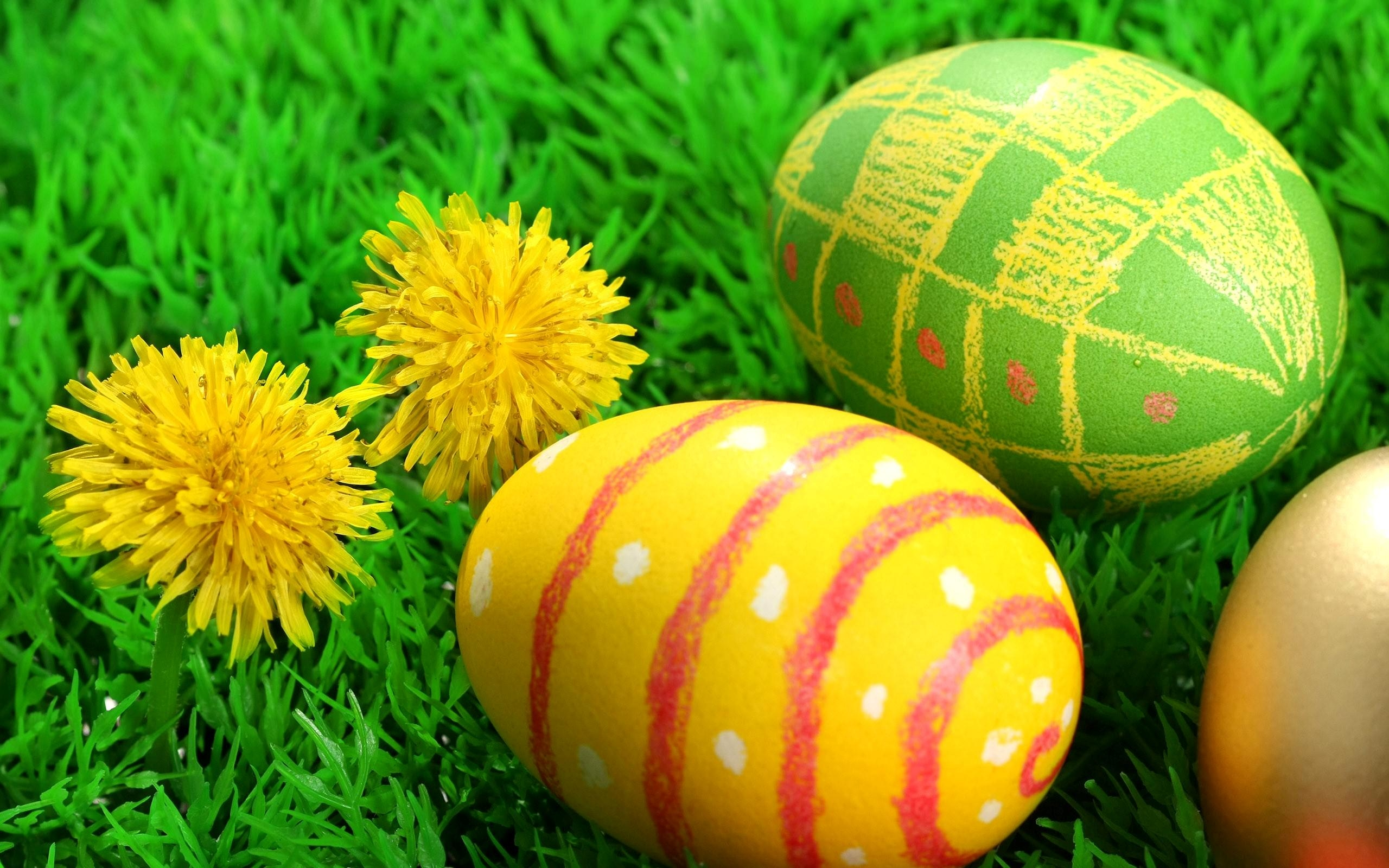 Cute Easter Eggs Wallpaper