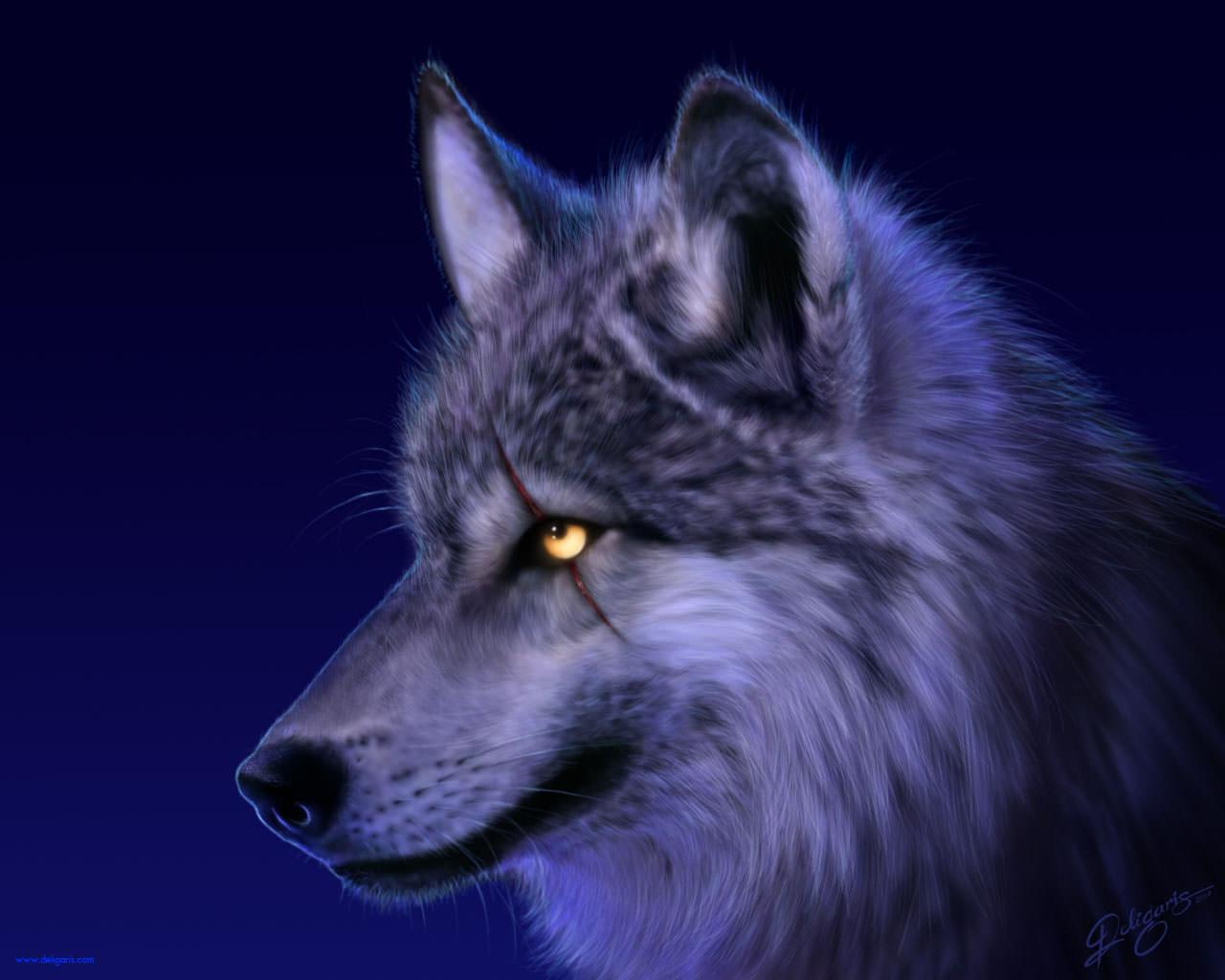 Amazing Wolf Background