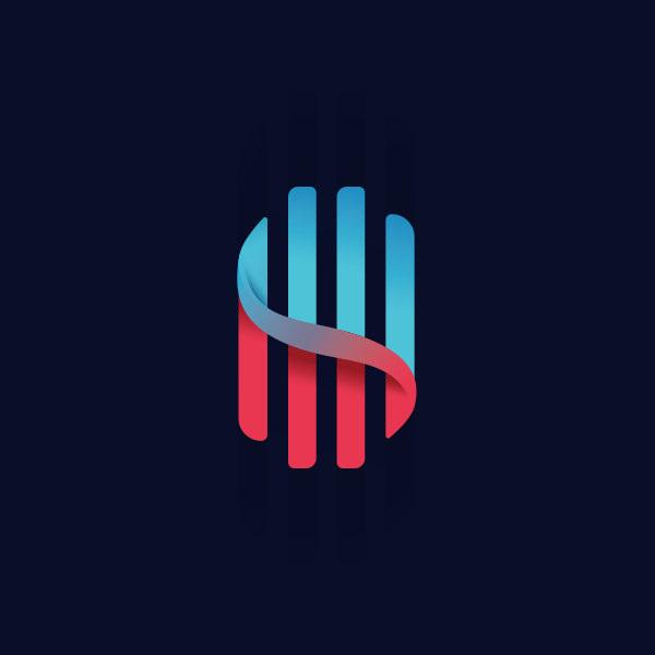 S Type Wave Logo