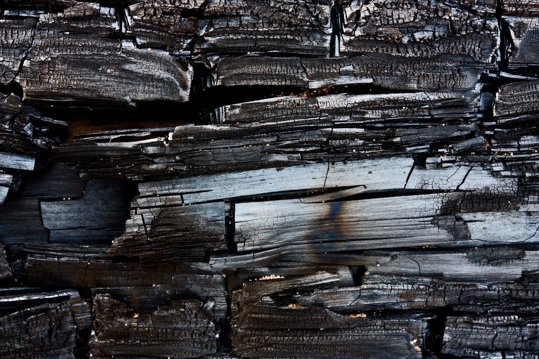 Distressed Charred Wood Textures