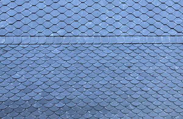 Amazing Fish Scale Pattern
