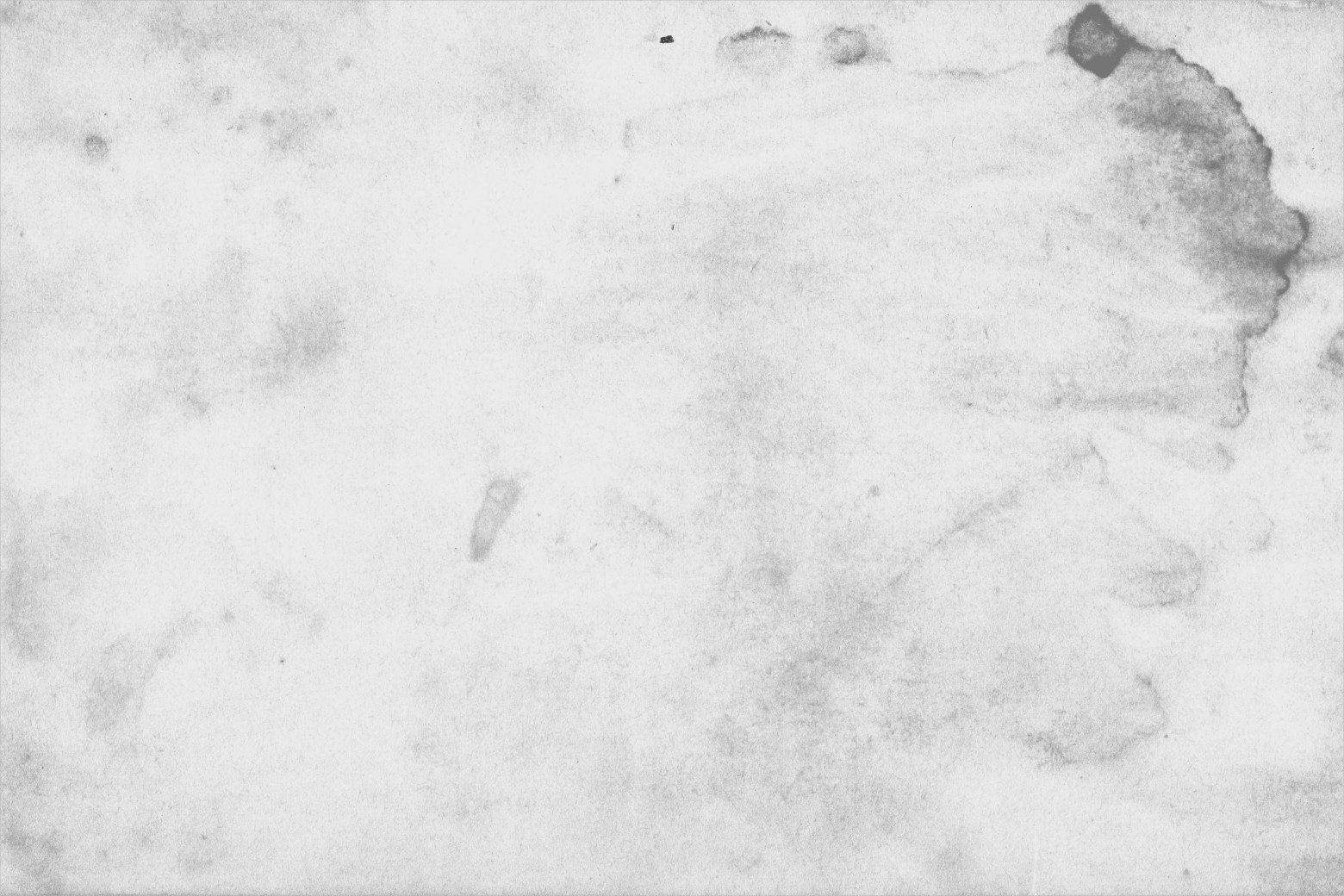 Amazing White Grunge Texture