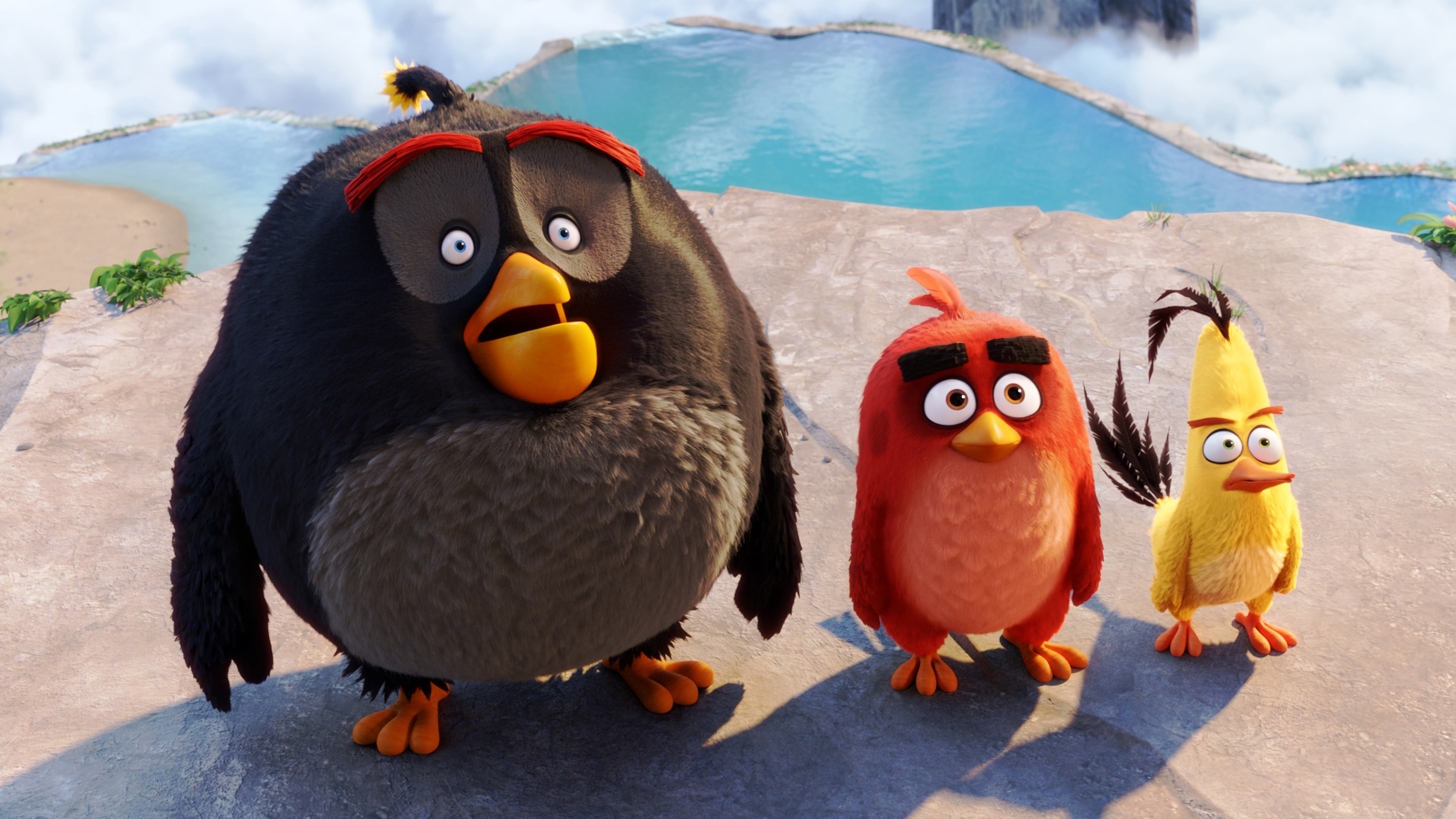 Angry Birds High Quality Background