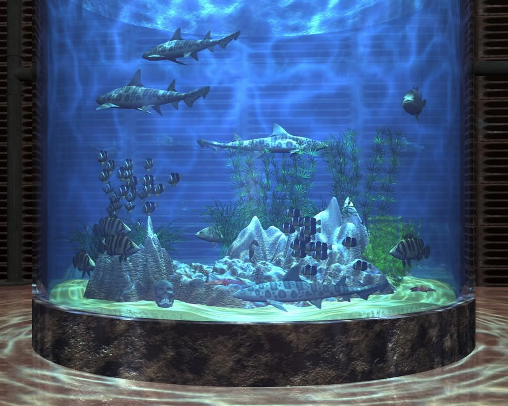 25 aquarium backgrounds wallpapers freecreatives for Desktop fish tank
