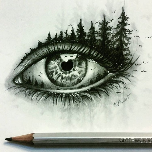 Beautiful Nature Pencil Drawings: 15+ Pencil Drawings Of Eyes