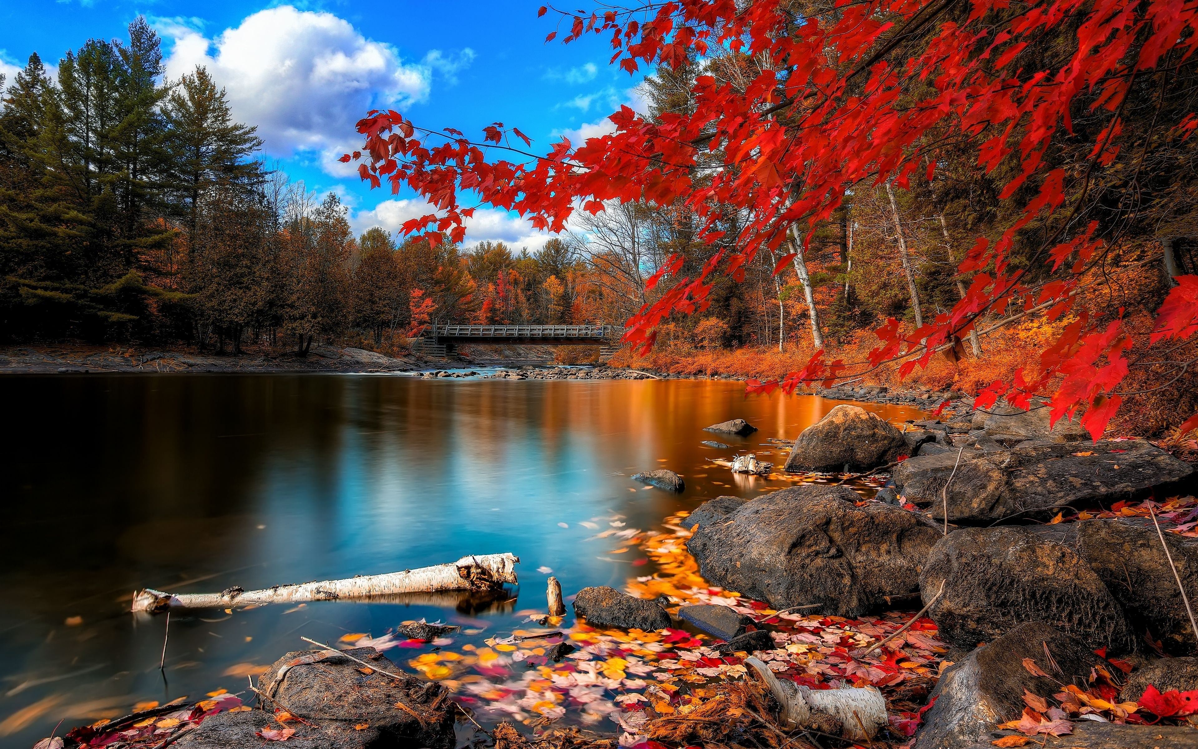 Awesome Autumn Wallpaper