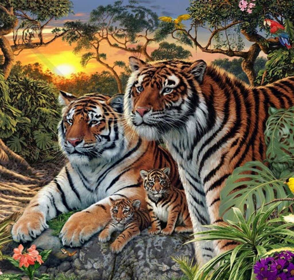 Beautiful Big Cats Wallpaper